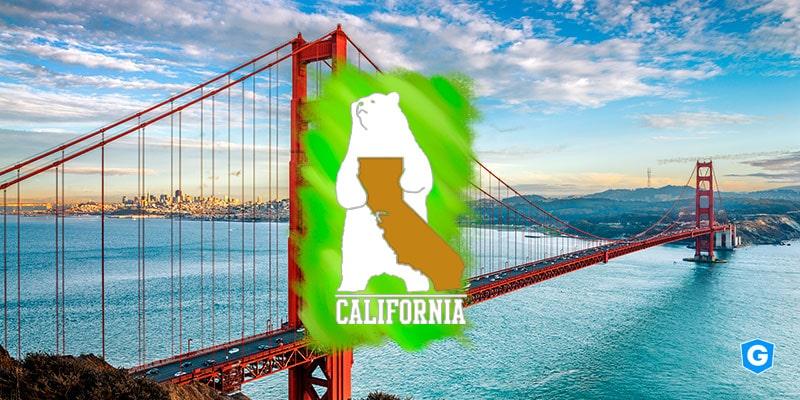 CCPA as a bridge between California Bear and data protection